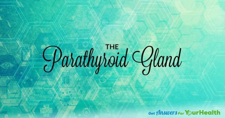 Your-Parathyroid-Gland